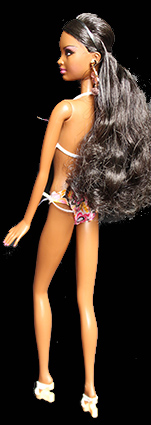 Barbie - Collection Holiday Dolls