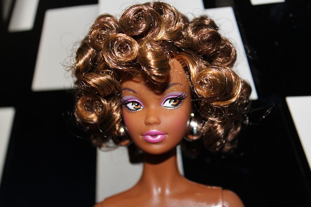 Barbie Nicinha Article Profil