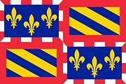 Drapeau Bourgogne (FR)