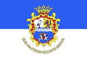 Drapeau Jász-Nagykun-Szolnok