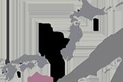 Drapeau Chubu (JPN)