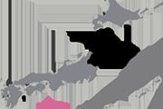Drapeau Tohoku (JPN)