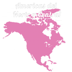 Barbie in North and Central America