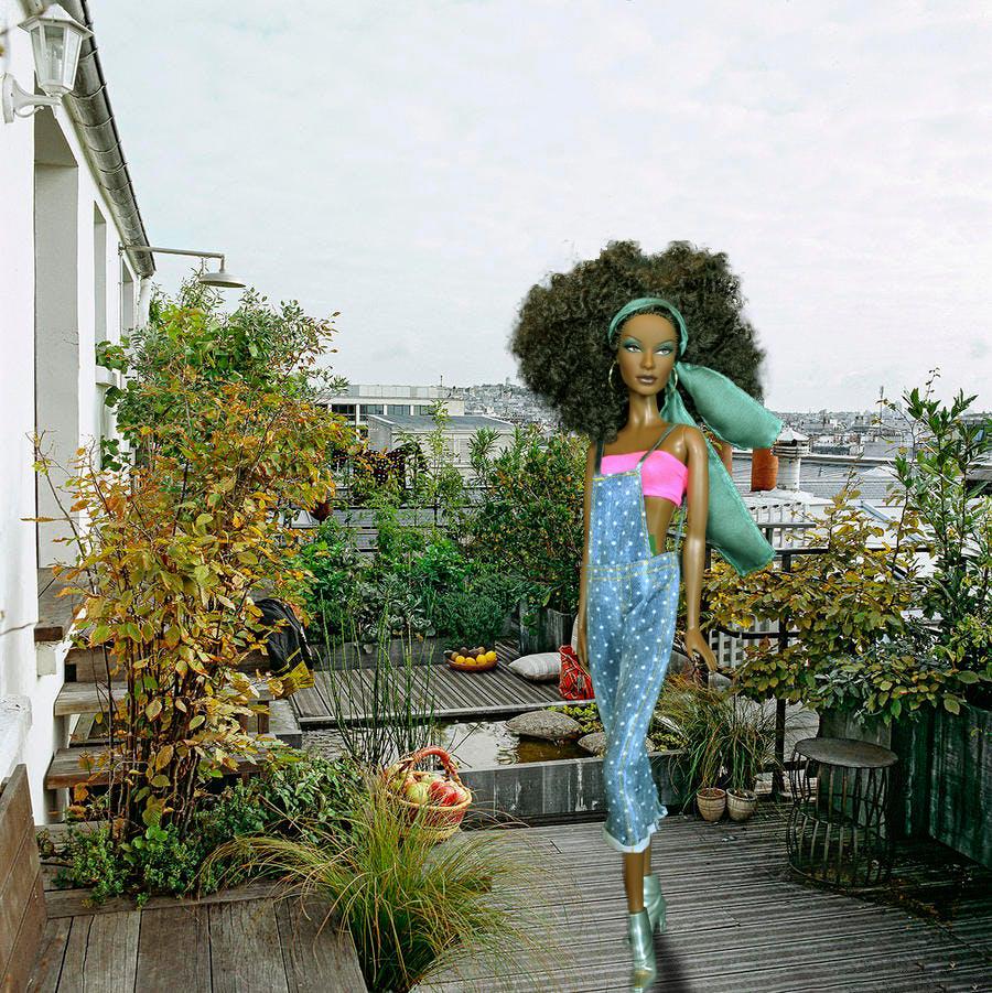 Barbie Rosemary