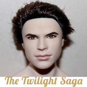 Collection The Twilight Saga